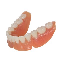 bottom d premium dentures
